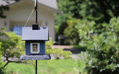 Vogeltjes blij met een huisje